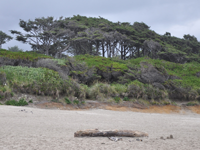 Beachside State Recreation Site