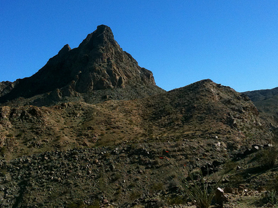 Bear Creek Oasis Trail