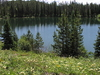 Bearpaw Lake Trailview - Grand Tetons - Wyoming - USA