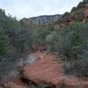 Bear Sign Trail