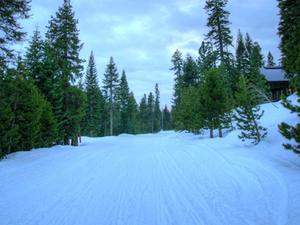 Bear Valley Resort