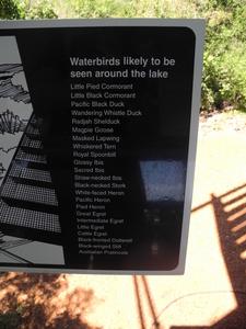 Beatrice Lake Bird List