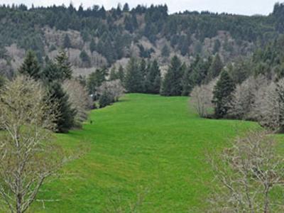 Beaver Creek State Natural Area
