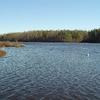 Beaverdam Swamp Reservoir