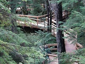 Beaver Falls Trail Karst