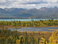 Beaver Pond And Lake Clark.