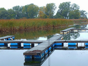 Bedford Creek Marina And Campground