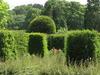 The Yew Garden