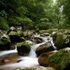 Benxi Green Stone Valley Landscape