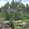 Berastagi - Sumatra - Indonesia