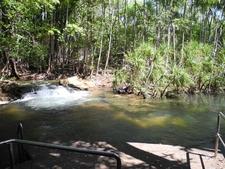 Berry Springs Swimming