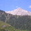Best View Cafe Above McLeod Ganj