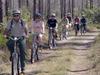 Bicycling Along A Long Pine Key Trail