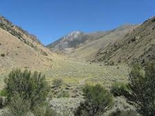 Big Creek Canyon