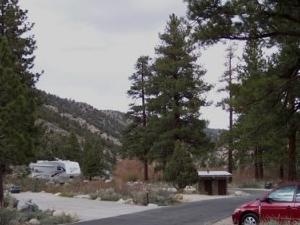 Los árboles grandes Campground