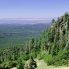 Bill Williams Mountain Trail