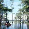 Negro Bayou Lake