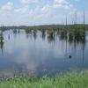 Lago Negro