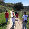 Black Mesa Trail 241 - Tonto National Forest - Arizona - USA