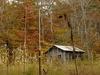 Black Mountains NC - Pisgah NF