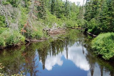 Black River (Marquette County)