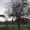 Bleak Park Hill