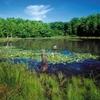 Blue Heron Park Preserve