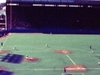 A Toronto Blue Jays Game