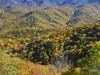 Blue Ridge Parkway Mountains NC