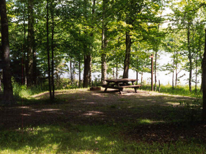 Bobcat Meadow Campground