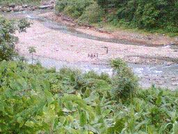 Borail Santuario de Vida Silvestre