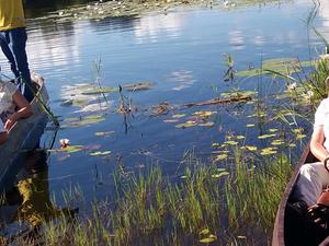 3 Days Mokoro Safari in Okavango Delta, Botswana
