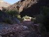 Boucher Creek