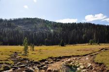 Boundary Trail - West Glacier - Montana - United States