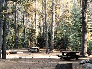 Bowler Group Campground