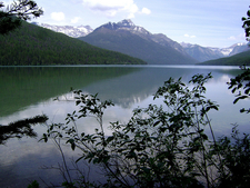 Bowman Lake Head Trail At Glacier - Montana - United States