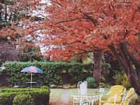 Bowral Cottage Inn