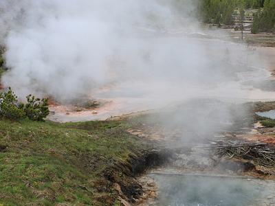 Box Spring - Yellowstone - USA