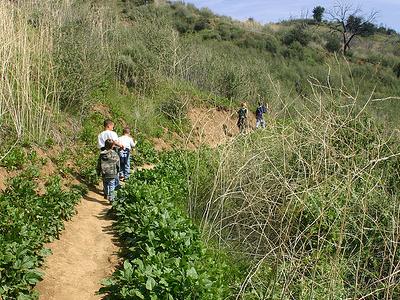Boyer Trail 148 - Tonto National Forest - Arizona - USA
