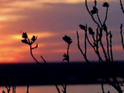 Brantley Lake State Park