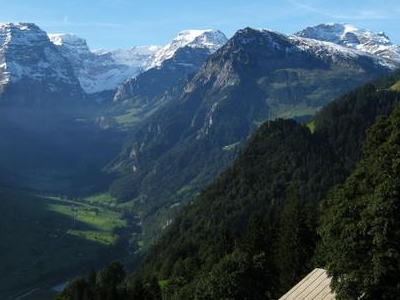 Braunwald  Alps