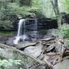 B. Reynolds - Falls Trail - Ricketts Glen PA