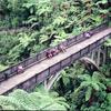 Bridge to Nowhere Walk