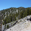 Bristlecone Trail Hikers - Nevada