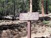 Brookbank Trail Sign