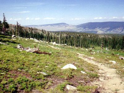 Browns Lake Trail