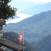 Brunescio