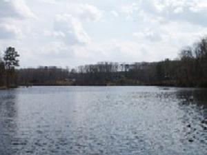 Brunswick Condado de Lake