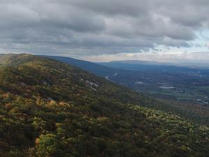 Cepillo de Montaña (Blair County, Pennsylvania)