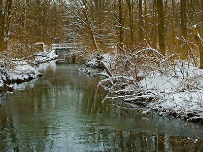 Buck Creek Michigan